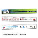30cm Standard Ruler